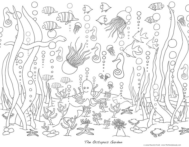sea life coloring page art pinterest