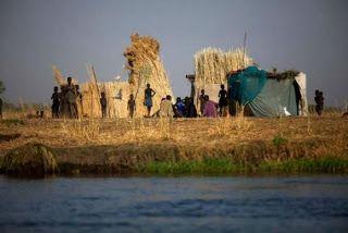 Pregopontocom Tudo: Mais de 100 milhões de pessoas sofrem de graveinsegurança alimentar, alerta FAO...