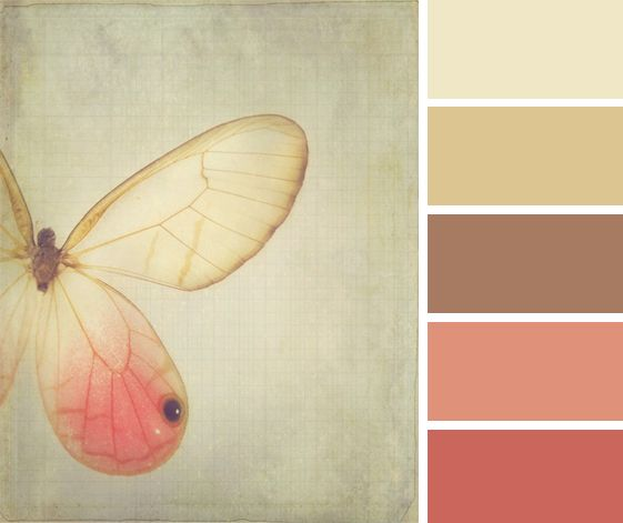 Rustic color palette (beige, brown, coral, rust)