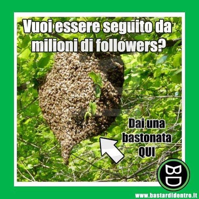 Un metodo veramente efficace! #bastardidentro #followers #alveare #api #ipnoticamentebastardidentro www.bastardidentro.it