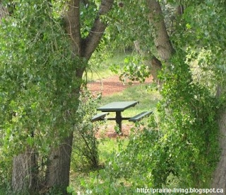 Prairie Living: Camping Eats - Free Camp Menu and Food List printables