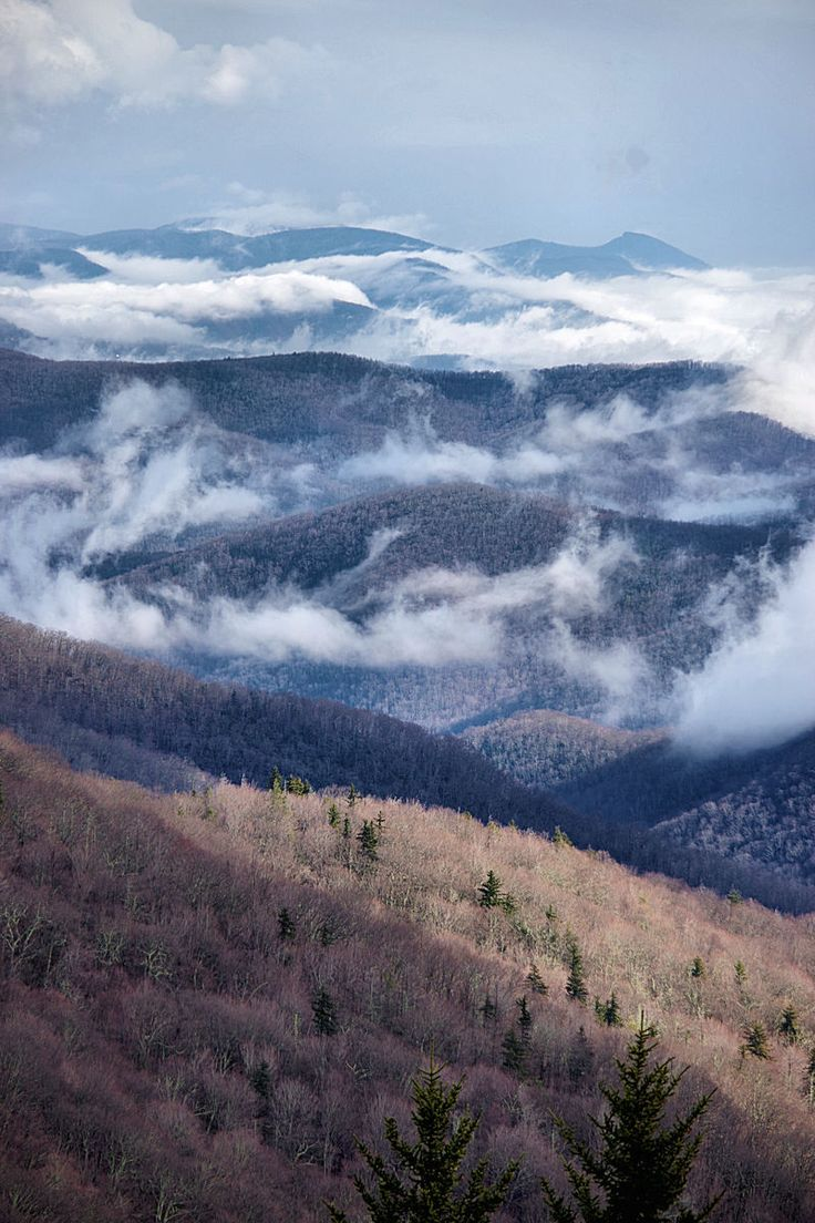 Blue Ridge Mountains in North Carolina - north of Asheville near Mt. Mitchell