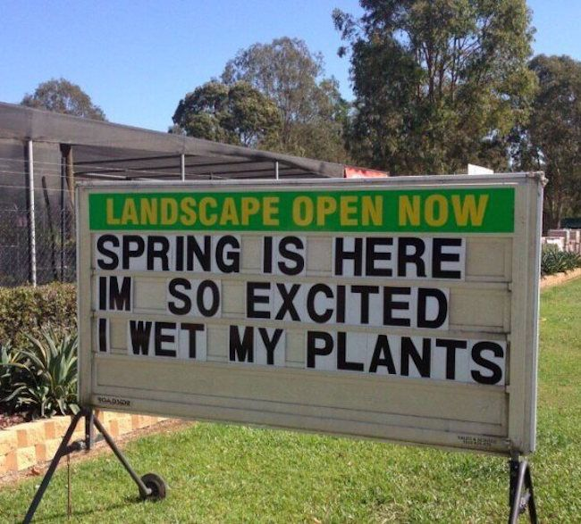 spring is here I'm so excited I wet my plants!