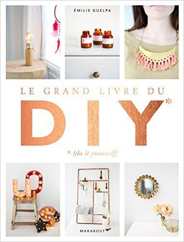 Amazon.fr - Le grand livre des DIY* *(Do it yourself) - La bible de toutes les techniques - Émilie Guelpa - Livres