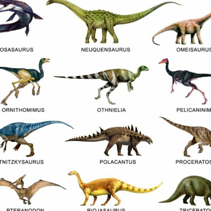 Названия динозавров с картинками список на английском