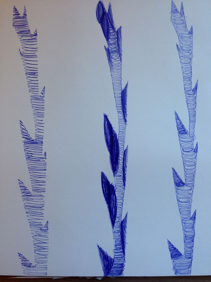 In this biro pen drawing I had sketched a plant stem using a variation of mark makings with just the strokes and pressure of the pen.