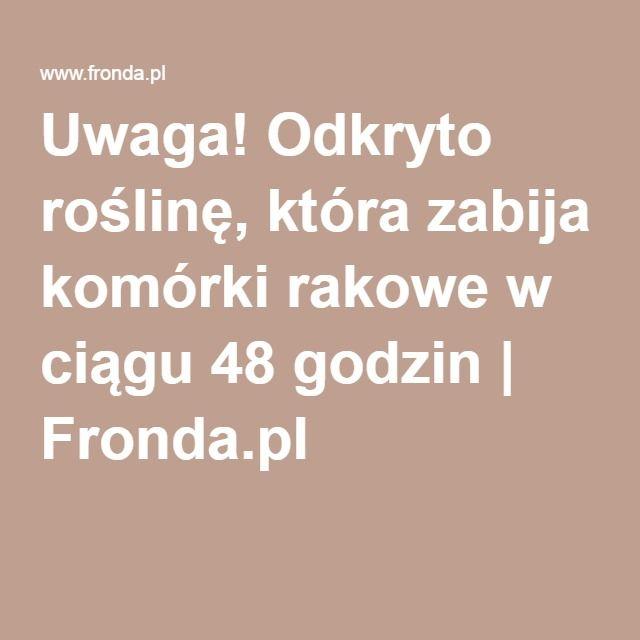 Uwaga! Odkryto roślinę, która zabija komórki rakowe w ciągu 48 godzin | Fronda.pl