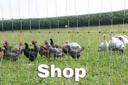 Kencove Electric Netting - lightweight electric poultry netting - protects from predators.