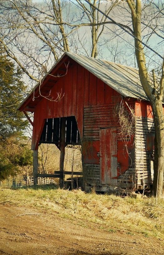 Red barn growing old, North Carolina by Elizabeth Golden #Provestra #Skinception #coupon code nicesup123 gets 25% off
