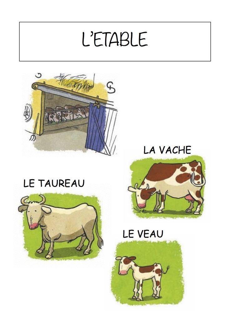 Vocabulaire de la ferme - Imagier simple pour la maternelle : L'étable