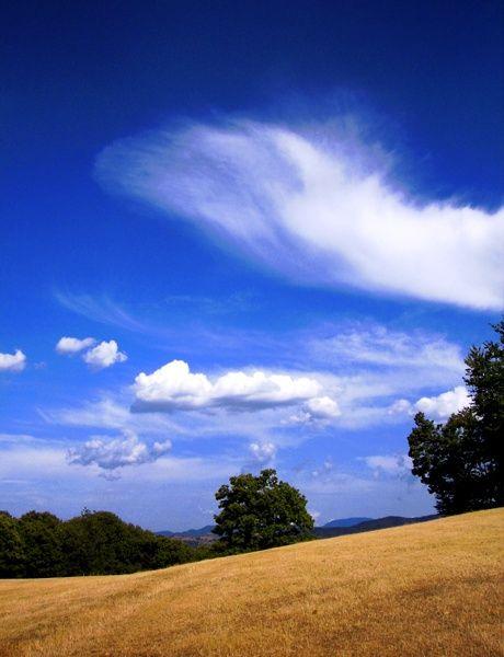 Val Casotto, Monasterolo #hills #provinciadicuneo #piemonte #italy