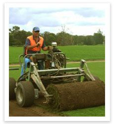 Turf Supplies for Trade - Landscapers - http://www.buffaloturf.com.au.