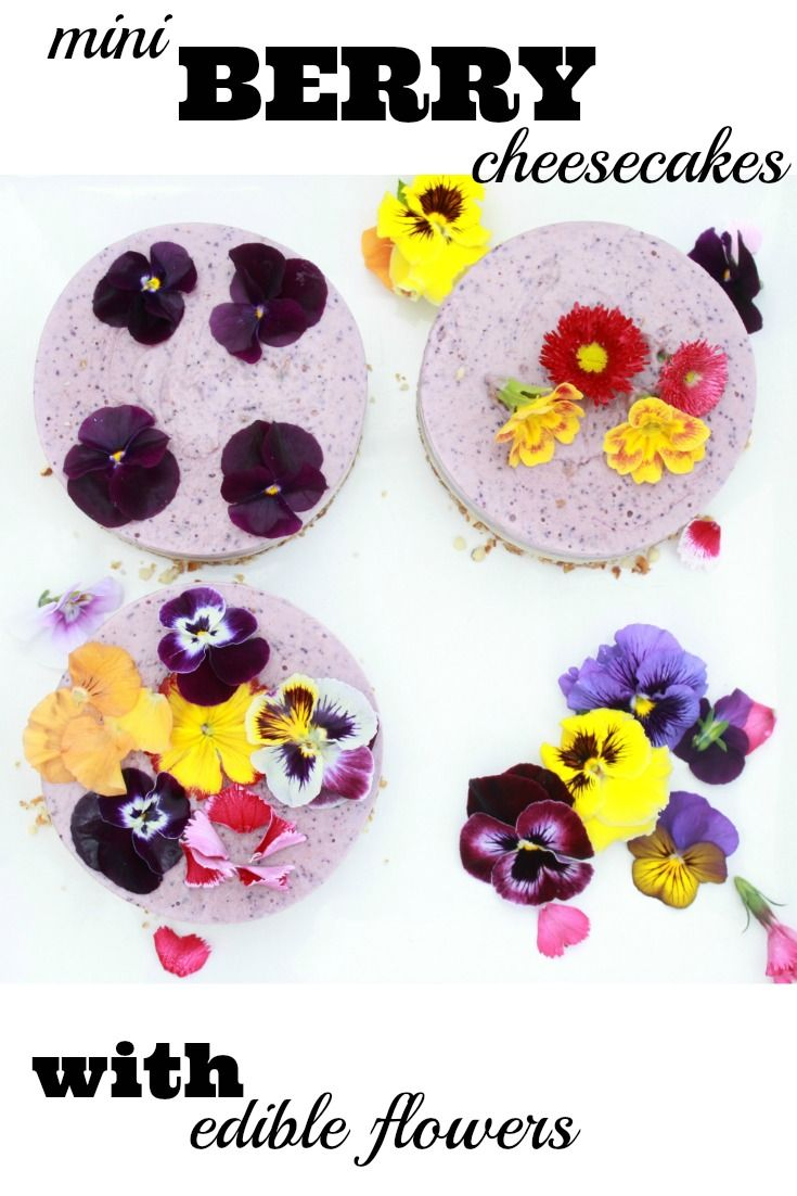 Raw Berry Cheesecake | Mr and Mrs T Plus Three. An easy to make delicious vegan and gluten-free berry cheesecake with beautiful edible flowers.