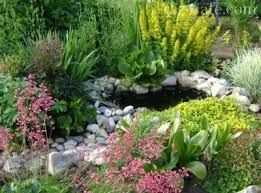 Картинки по запросу цветник у пруда фото