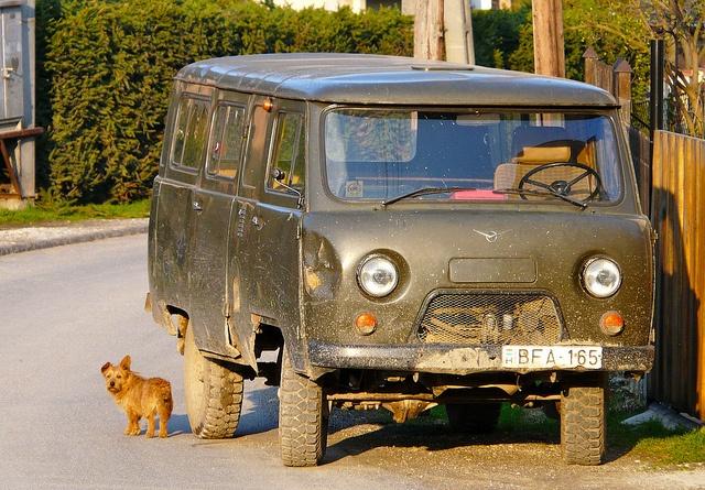 Soviet UAZ van guarded by a funny dog - Bükk Mountains - Village of Répáshuta - Hungary Cool and Funny!