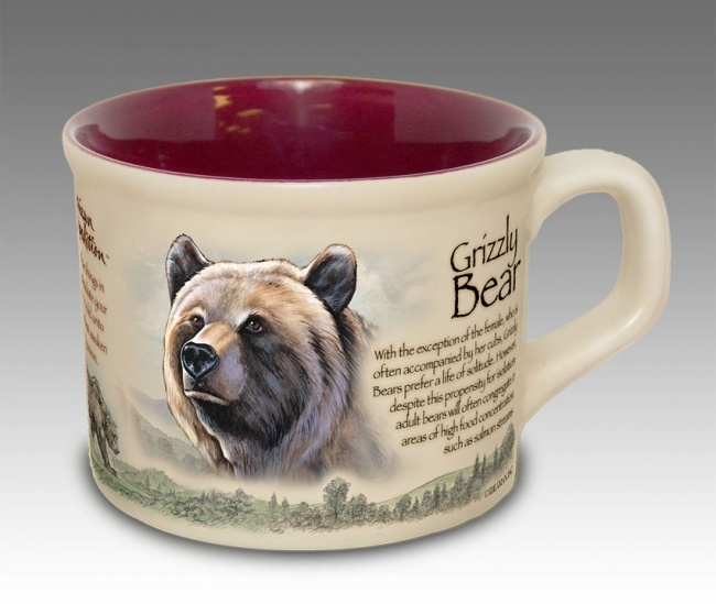 1837 best Bear Necessities images on Pinterest | Bears ...