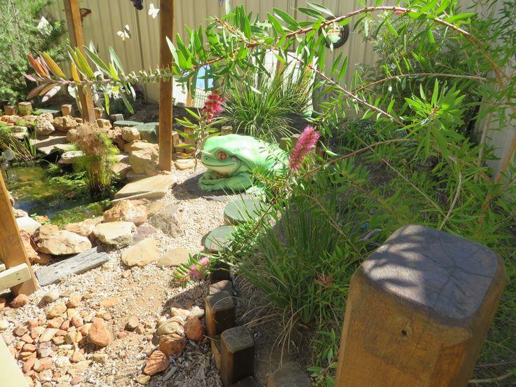 Frog & Butterfly Garden