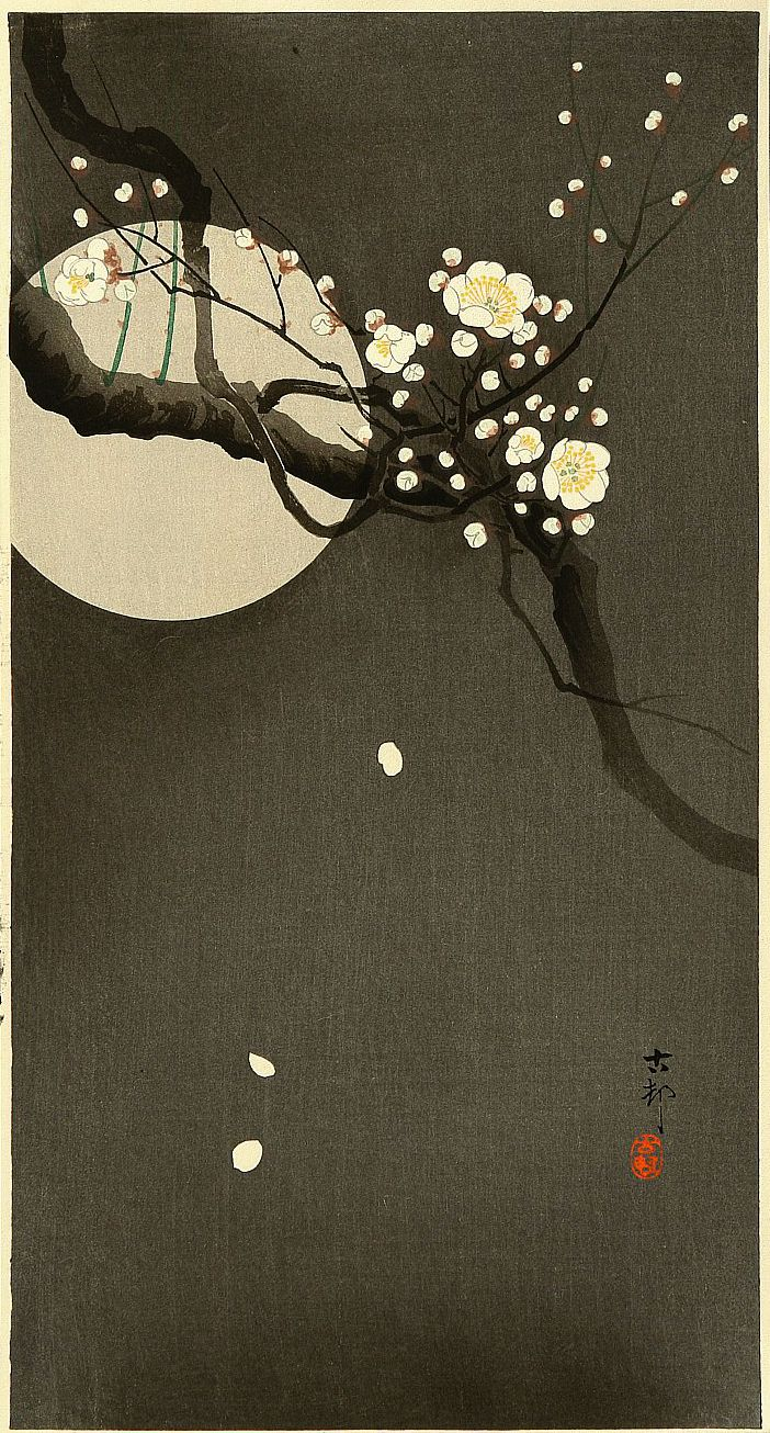 """Flowering Plum and Moon by Ohara Koson.......Ohara Koson (1877 – 1945) was a Japanese painter and printmaker of the late 19th and early 20th centuries, part of the shin-hanga (""""new prints"""") movement."""