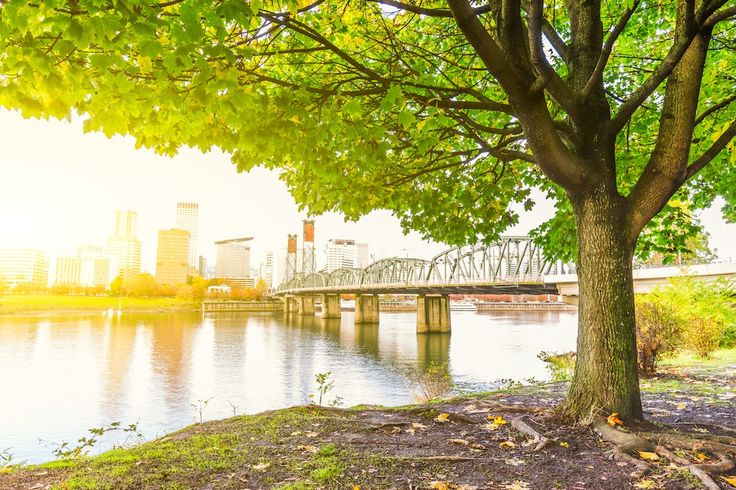 The city of endless adventure is waiting for you. See why you should tour Portland, Oregon.
