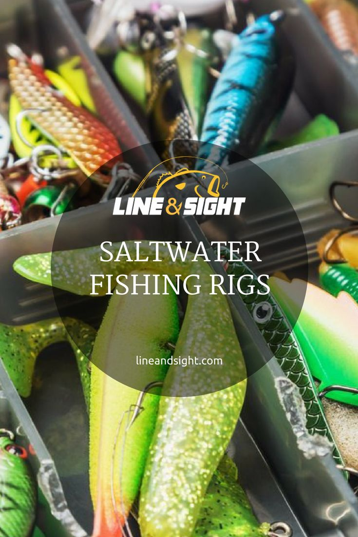 SALTWATER FISHING RIGS New to saltwater fishing? Or are you simply looking for new ways to catch fish? Either way, this guide will show you the best rigs for saltwater game fish.