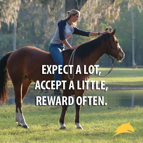 Expect a lot, accept a little, reward often.