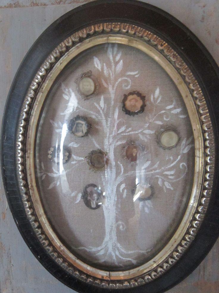 Collection de broches anciennes présentée façon Arbre généalogique sous cadre à verre bombé Napoléon III