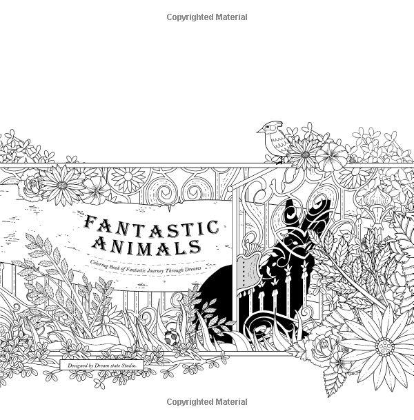 Amazon Fantastic Animals Coloring Book Of Journey Through Dreams 9781523622481 Kuo Chun Hung Buffy Liao Yun Chu Chen Yu