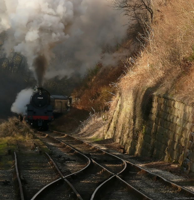 75029 approaching Goathland after the long uphill slog from Darnholm, England