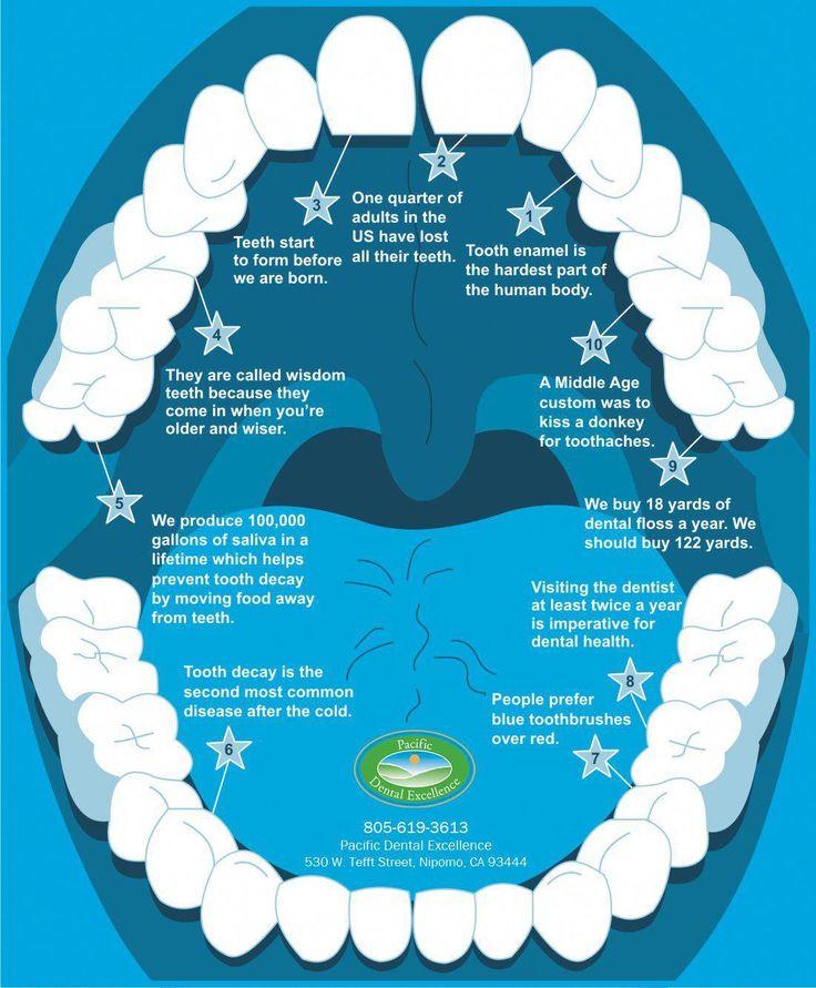 Worthless Emergency Dentist Families