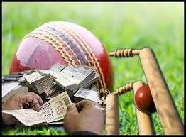 Image result for cricket betting hd photo