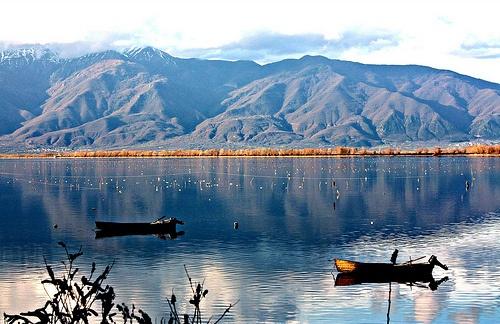 GREECE CHANNEL | kerkini lake greece