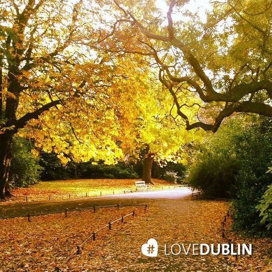 St Stephen's Green located at the top of Grafton Street. A jewel in the crown of Dublin's city parks and gardens http://bit.ly/1u3F5vX #LoveDublin  (image via @paollamoura)