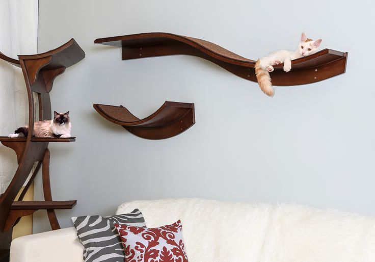 25 best ideas about cat shelves on pinterest cat wall for Bookshelf cat tower