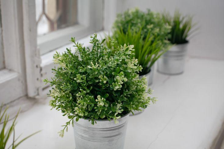 полочка для растений для подоконника - Поиск в Google