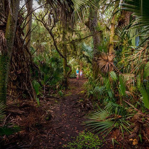 11 Unexpected Things To Do On Your Next Orlando Vacation