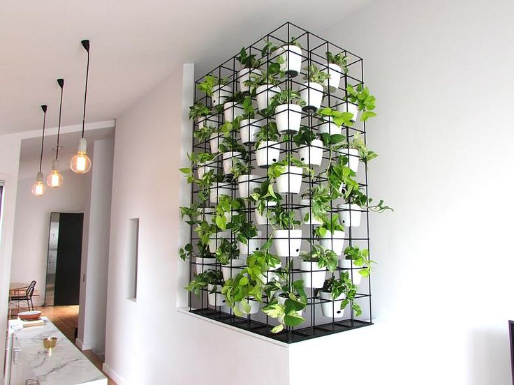 A Stunning Vertical Garden Indoor Install By Brenton Jurey At Reogro In  Melbourne Australia. Brenton Jurey Was One Of The First Members