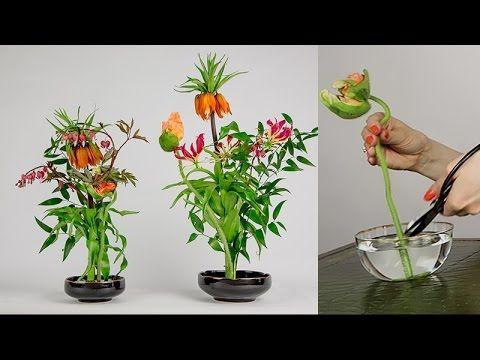 Green Experience Arrangement • Ikebana Beautiful