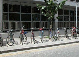 Peluang Usaha Sewa Sepeda di Car Free Day