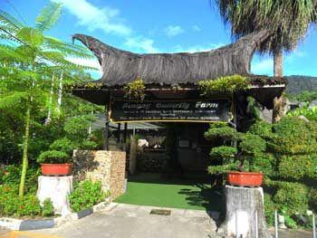 Butterfly Farm Penang, Teluk Bahang