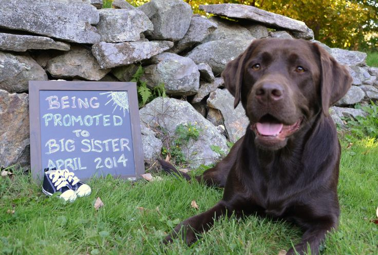 Our baby annoucement :)