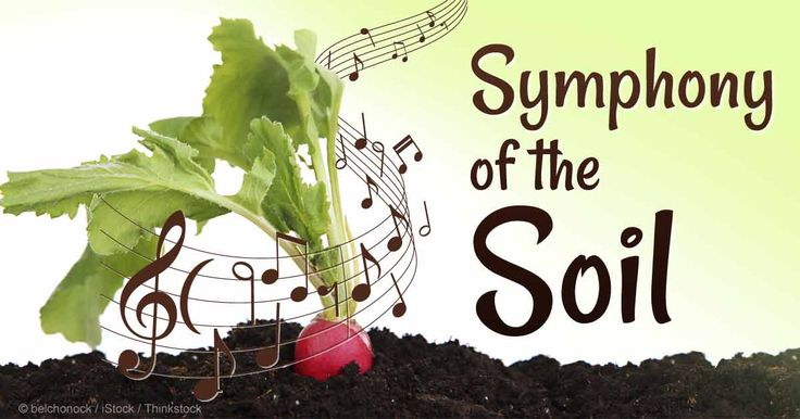 10 best images about soil conservation poster contest on for Importance of soil for kids