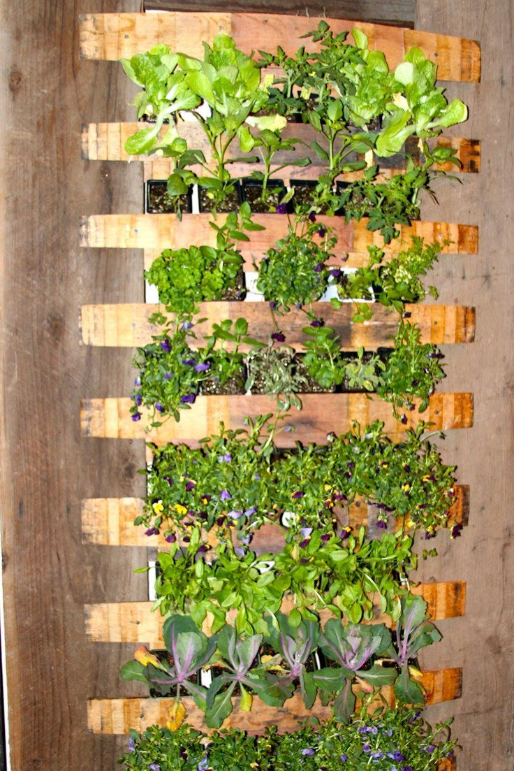 Best 25 Diy Vertical Garden Ideas On Pinterest Vertical