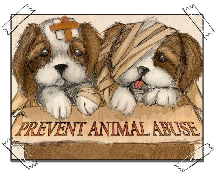essay on - stop cruelty to animals I can see you have done research and put efforts in your essay, a good job i am quite shocked to hear that the problem of animal cruelty is so serious and cannot be.