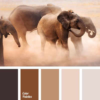 Sunset colors include a wide range of shades from pale pink to dark brown. Beige is a great base for a more saturated brown hues. Pastel pink adds tenderne
