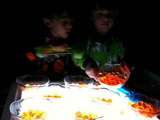 sorting,  scooping,  and pouring water beads into plastic bowls, on the light table