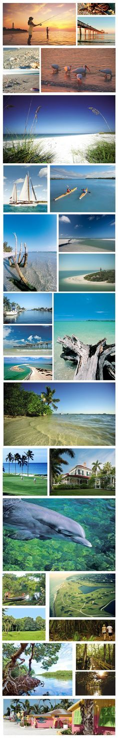 A vacation to the spectacular beaches of Fort Myers and Sanibel Island, Florida should be on everyone's bucket list!