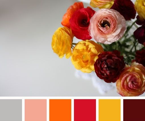 spring/fall color scheme by jojablueberry