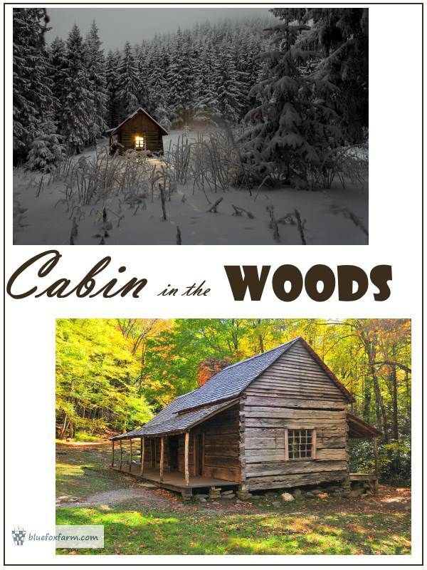 Cabin in the Woods - building sustainably, living light on the land... Alternative Building | Rustic Cabin