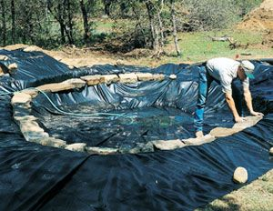 Gardens le 39 veon bell and garden ponds on pinterest for Make your own pond liner