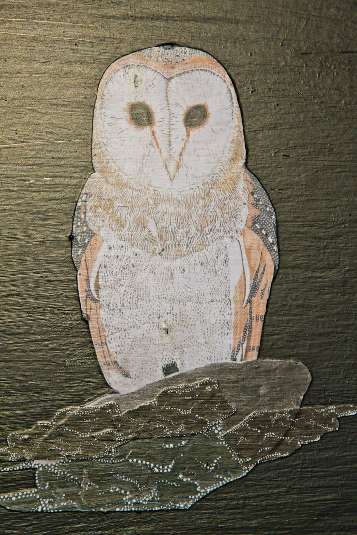 decoupage owl tray